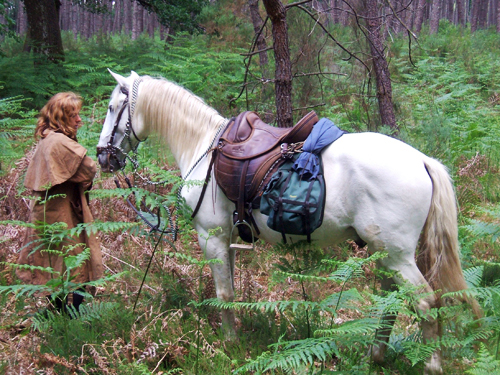 cheval nature